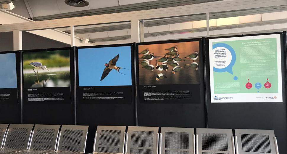 Exposition VINCI Airports sur la biodiversité, aéroport Grenoble Alpes Isère